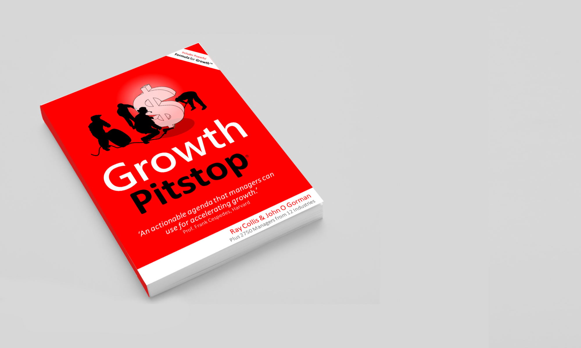 Growth Pitstop Book